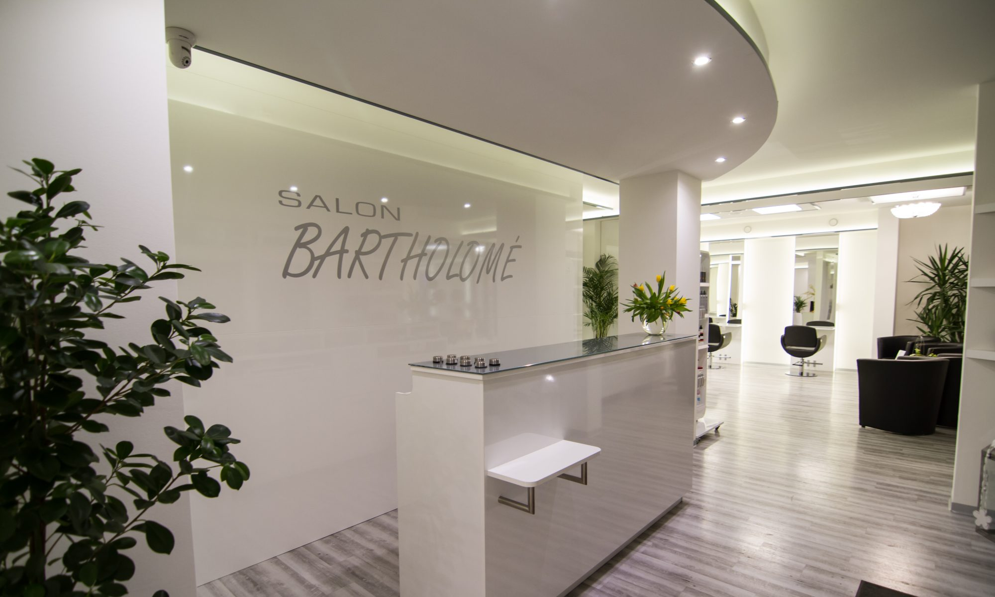 Salon Bartholomé